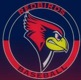 Boundary Waters Redbirds